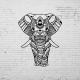 Duvar Dekoru Fil