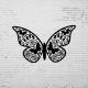 Duvar Dekoru Kelebek