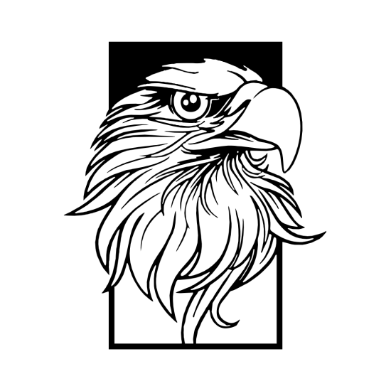 Duvar Dekoru Kartal